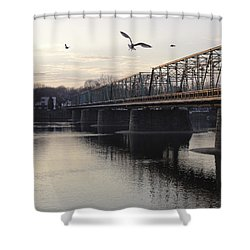 Gulls At The Bridge In January Shower Curtain