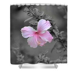 Soft Pink Shower Curtain by Michelle Meenawong