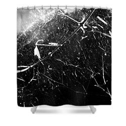 Shower Curtain featuring the photograph  Spidernet by Yulia Kazansky