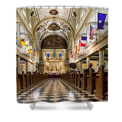 St. Louis Cathedral Shower Curtain by Steve Harrington