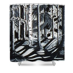 Take The Maine Path Shower Curtain