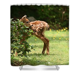 That Is My Head On My Body Shower Curtain by Kym Backland