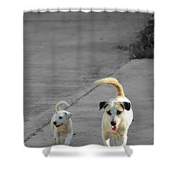 Two Of A Kind Shower Curtain by Michelle Meenawong