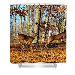 White Tail Deer Leaping  Shower Curtain by Peggy Franz