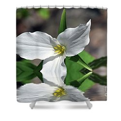 Spring Trillium Shower Curtain by Elaine Manley