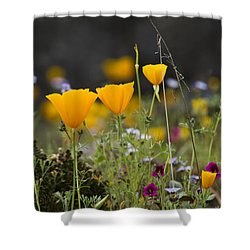 Wildflowers Explode Shower Curtain