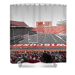0095 Badger Football  Shower Curtain