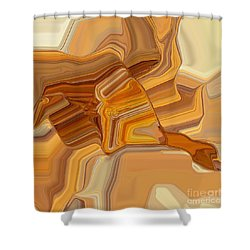 029-13 Shower Curtain