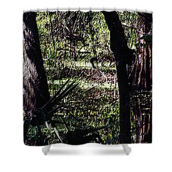 03032015 Southern Marsh Digital Pastel Shower Curtain