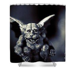 Evil Gargoyle Statue Shower Curtain