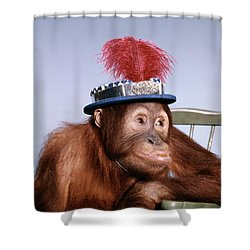 1960s Funny Humorous Orangutan Pongo Shower Curtain