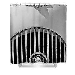 1969 Morgan Roadster Grille Emblems Shower Curtain by Jill Reger