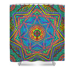 1 26 2014 Shower Curtain