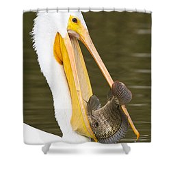 A Mouthful Shower Curtain by Bryan Keil
