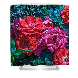 A Rose Is A Rose Shower Curtain by Richard J Cassato