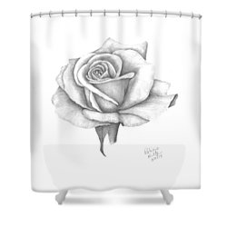 A Roses Beauty Shower Curtain by Patricia Hiltz