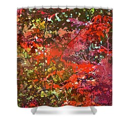 Abstract 278 Shower Curtain by Pamela Cooper