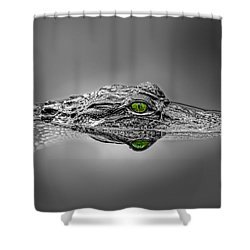 Alligator Shower Curtain by Peter Lakomy