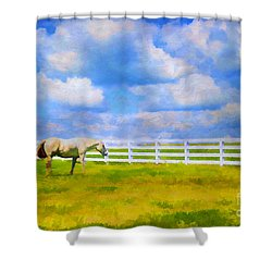 Alone Shower Curtain by Darren Fisher