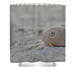 Shower Curtain featuring the photograph Always... by Melanie Moraga