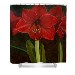 Amaryllis Shower Curtain by Nancy Griswold