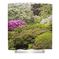 Asticou Azelea Garden - Northeast Harbor - Mount Desert Island - Maine Shower Curtain by Keith Webber Jr