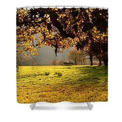 Autum Shower Curtain