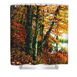 Autumn Colors In The Forest 1 Shower Curtain by Lanjee Chee