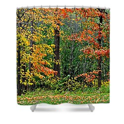 Autumn Landscape Shower Curtain by Frozen in Time Fine Art Photography
