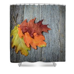 Autumn Leaves On Rustic Wooden Background Shower Curtain