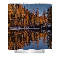 Autumn Reflected Shower Curtain by Mike Reid