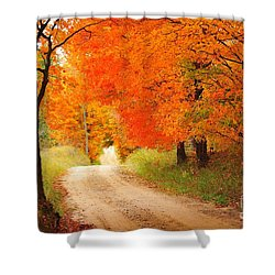 Shower Curtain featuring the photograph Autumn Trail by Terri Gostola