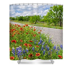 Backroad Beauty Shower Curtain by Lynn Bauer