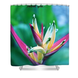 Shower Curtain featuring the photograph Beautiful Flower by Lorna Maza