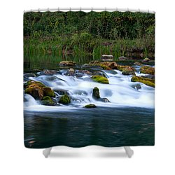 Bennett Spring Shower Curtain