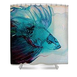 Betta Dragon Fish Shower Curtain