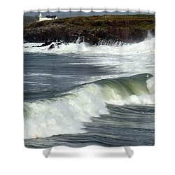 Big Swell Shower Curtain