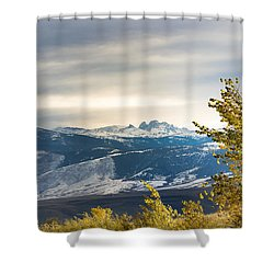 Blacktooth Shower Curtain