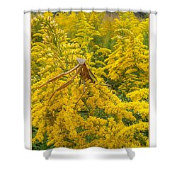 Blending In Shower Curtain by Sara  Raber