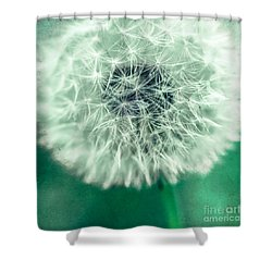 Blowball 1x1 Shower Curtain