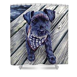 Blue Black Dog On Pier Shower Curtain
