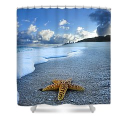 Blue Foam Starfish Shower Curtain