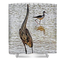 Blue Heron And Stilt Shower Curtain by Tom Janca