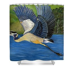 Shower Curtain featuring the painting Blue Heron In Flight by Brenda Brown