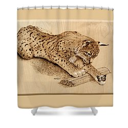 Bobcat And Friend Shower Curtain