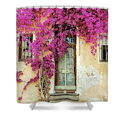 Bougainvillea Doorway Shower Curtain