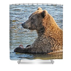 Salmon For Dinner Shower Curtain by Dyle   Warren