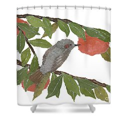 Bulbul And Persimmon  Shower Curtain by Keiko Suzuki