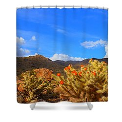 Cactus In Spring Shower Curtain