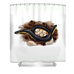 Caecilian Shower Curtain by Cindy Hitchcock